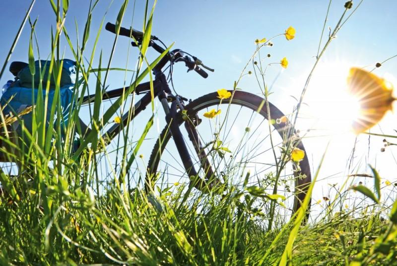 Mit dem Fahrrad um den Chiemsee