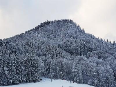 Hotel Steffl - Direkt am Skilift Westernberg